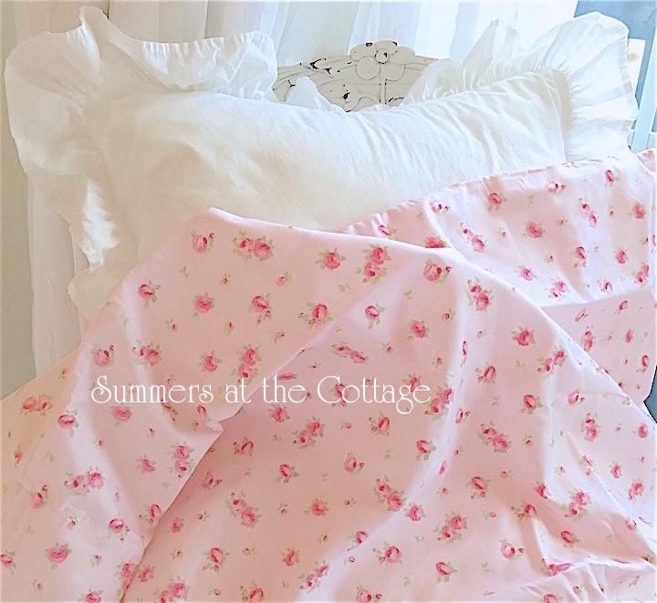 Pink Roses on Blush Pink!