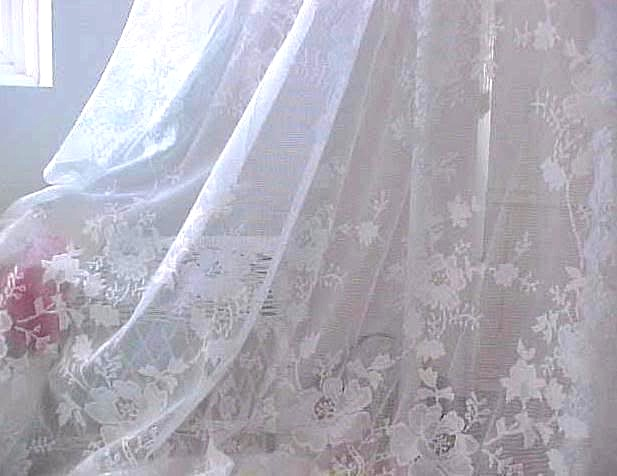 French White Lace Netting Drapes